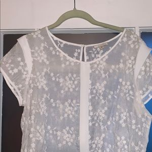 🍁3 for $24🍁 Pleione floral top